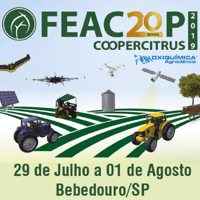 Feacoop 2019